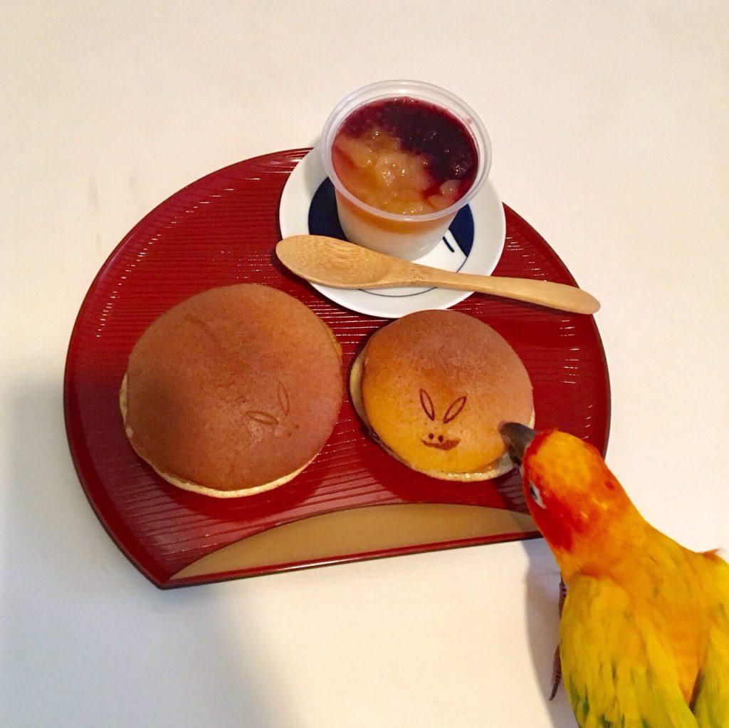インコと和菓子のコラボレーション