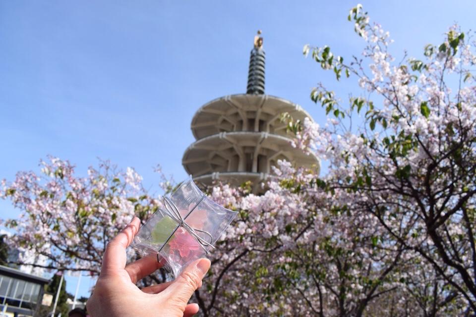サンフランシスコ桜祭り